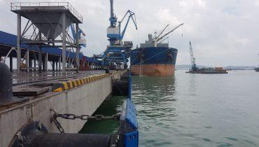 Đệm va tầu Sumitomo – Vững vàng trước sóng gió
